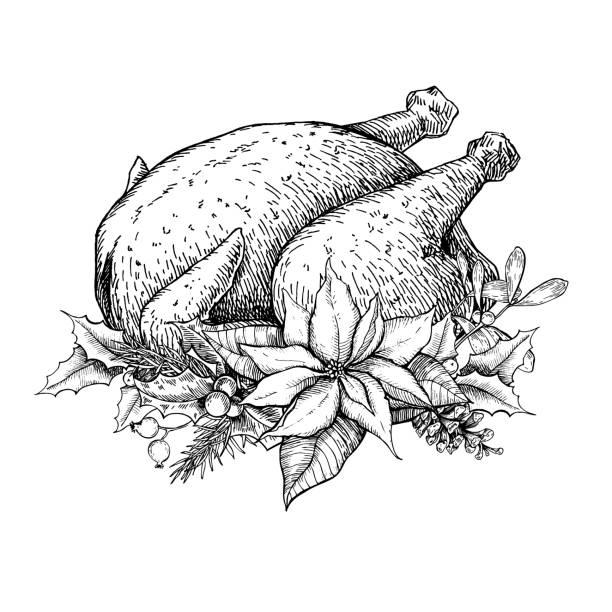 christmas or thanksgiving turkey. hand drawn vector illustration - turkey stock illustrations