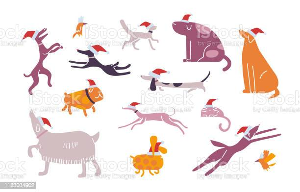 Christmas pet set animals celebrate new year vector illustration vector id1183034902?b=1&k=6&m=1183034902&s=612x612&h=a9tw3iy7ylhqjjcu9lscmkybqctfbebh0wwbe jwuuq=