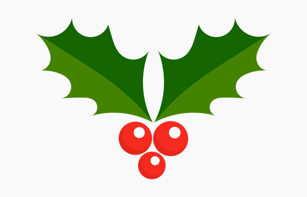 Christmas plant holly berries icon. Christmas plant holly berries icon. Vector illustration. berry fruit stock illustrations