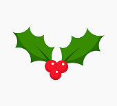 Christmas plant symbol holly berry icon. Vector illustration