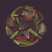 Hand drawn branches and cones of coniferous trees in a circle. Christmas plants. Vector sketch  illustration.