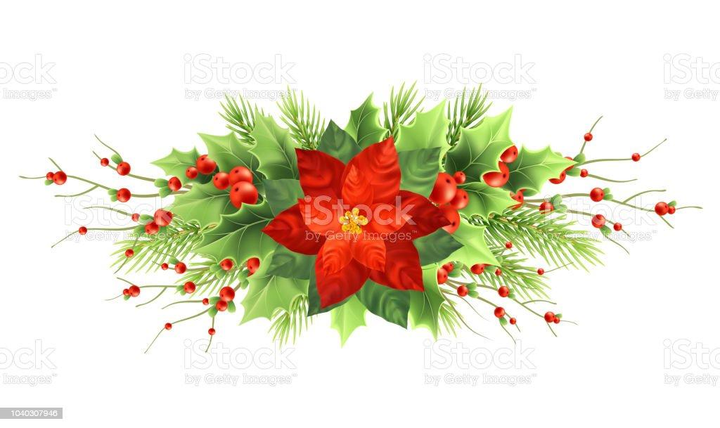 Weihnachten Weihnachtsstern Blume Realistische Vektorillustration ...