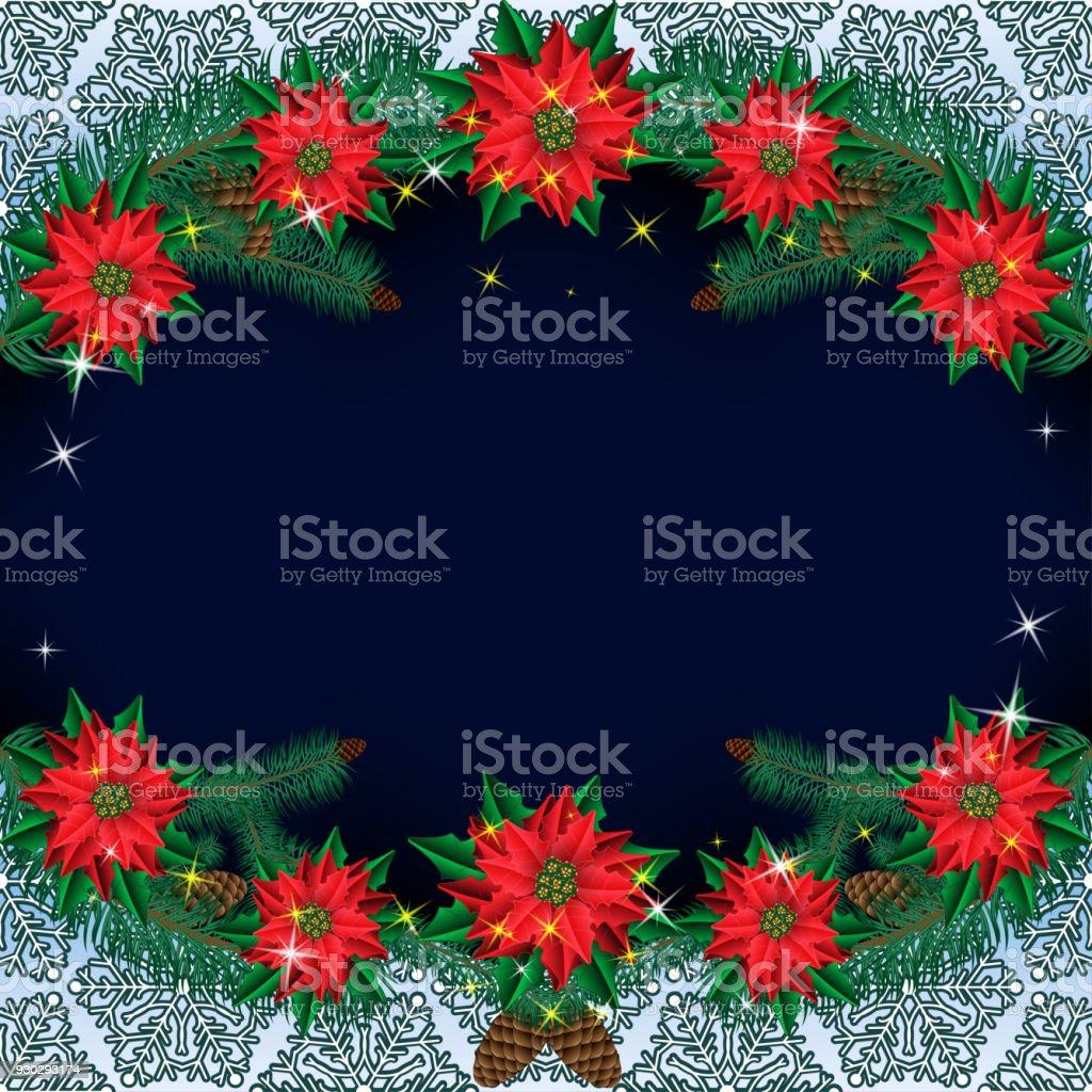 Weihnachten Weihnachtsstern Blumen Hintergrund Mit Tannenzweigen Auf ...