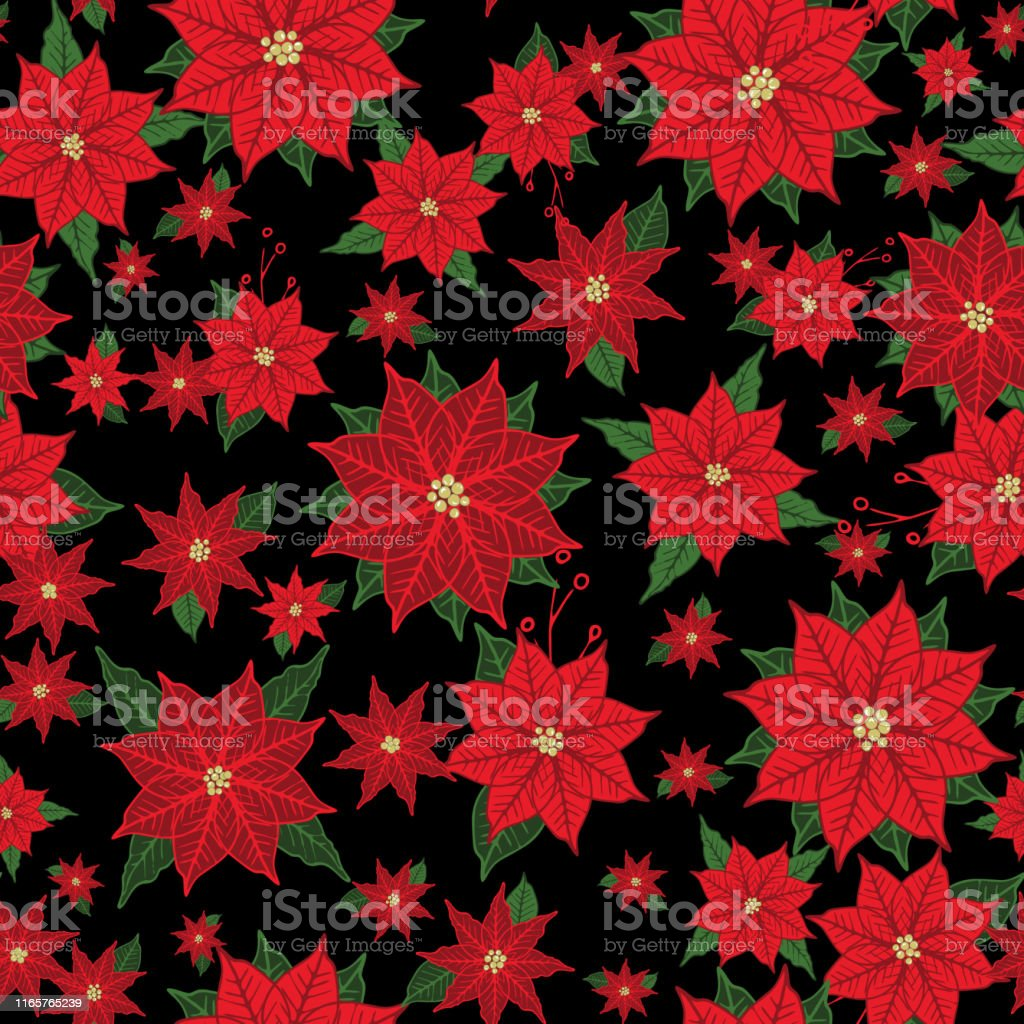 Christmas Poinsettia Vector Seamless Floral Pattern Background