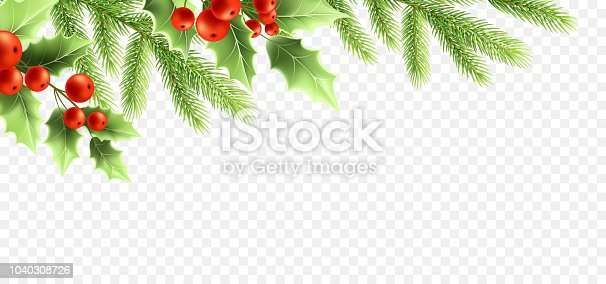 Christmas realistic decorations banner design. Holly tree branches with green leaves and red berries, fir twigs on transparent background. Greeting card, poster design element. Color isolated vector