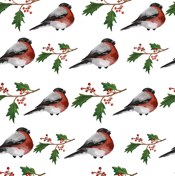 weihnachten nahtlose hintergrund mit holly beeren und bullfinches - dompfaff stock-grafiken, -clipart, -cartoons und -symbole
