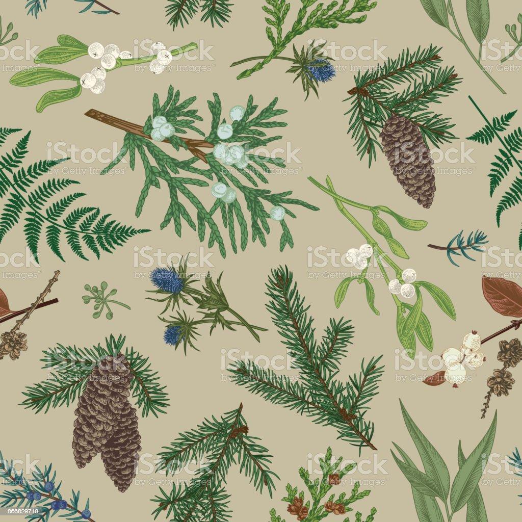 Christmas seamless botanical pattern. vector art illustration