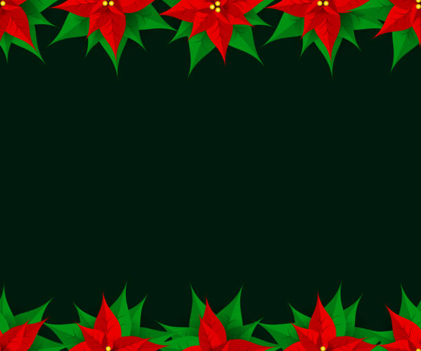 321f04ed9 Top 60 Poinsettia Border Backgrounds Clip Art, Vector Graphics and ...