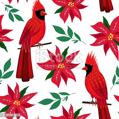 istock Christmas seamless pattern with red Northern cardinal birds and poinsettia flower. Christmas symbol  Redbird. Background for wallpaper, wrapping paper, textile. Vector illustration isolated on white. 1283561403