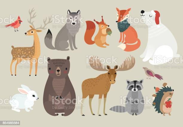 Christmas set hand drawn style forest animals vector id854985584?b=1&k=6&m=854985584&s=612x612&h=7yvlgd24gokkatjk93re pv bgmuwonwpksyprhyyc8=
