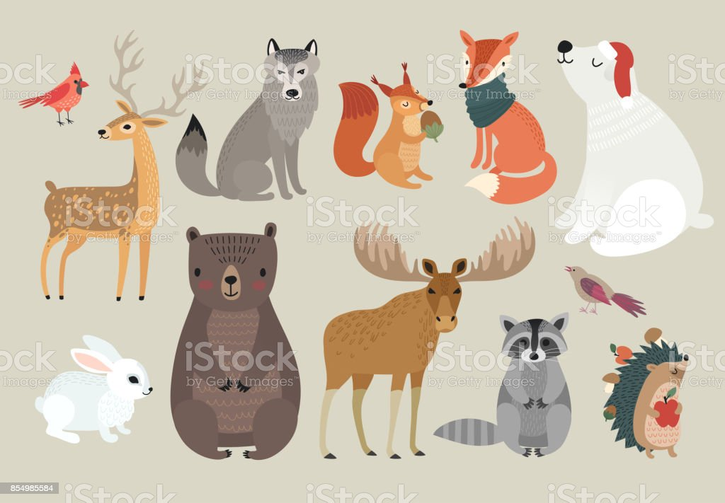 Christmas set, hand drawn style - forest animals. \ vector art illustration