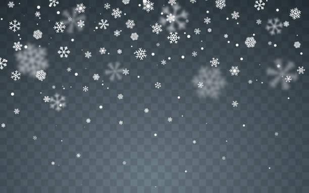 ilustraciones, imágenes clip art, dibujos animados e iconos de stock de nieve navideña. copos de nieve caídos sobre fondo oscuro. nevada. ilustración vectorial - nieve