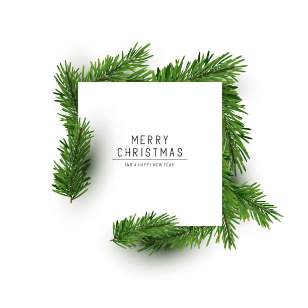 Christmas Square Background Layout A christmas square shaped layout background with fir branches. Vector illustration holiday background stock illustrations