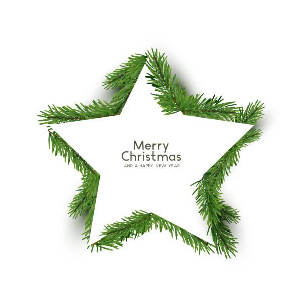 Weihnachtsstern Form aus Tannenzweige – Vektorgrafik