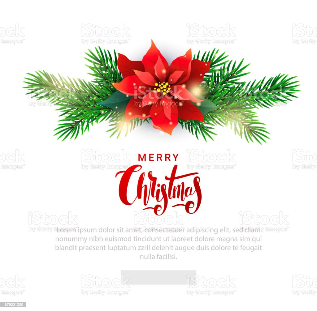 Modelo de Natal para lista de e-mail com Poinsettia - ilustração de arte em vetor