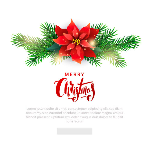 christmas template for email list with poinsettia - christmas decoration stock illustrations