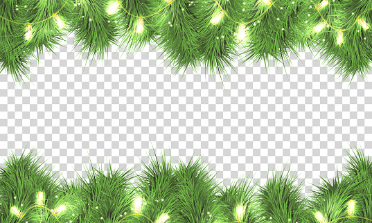 Christmas tree branches,lights, garland isolated.