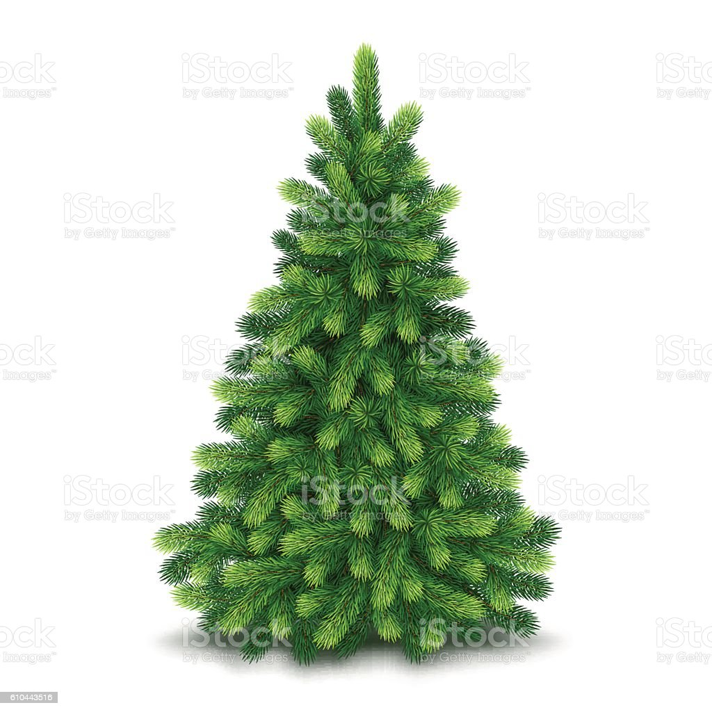 Christmas tree, detailed vector illustration vector art illustration