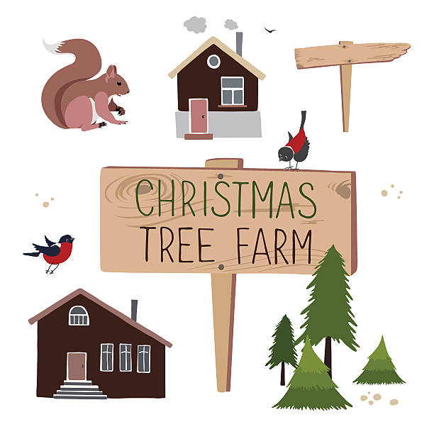 Christmas tree farm. Set of objects Vector set for creation illustrations about Christmas tree farm. Christmas Trees for sale garden center stock illustrations