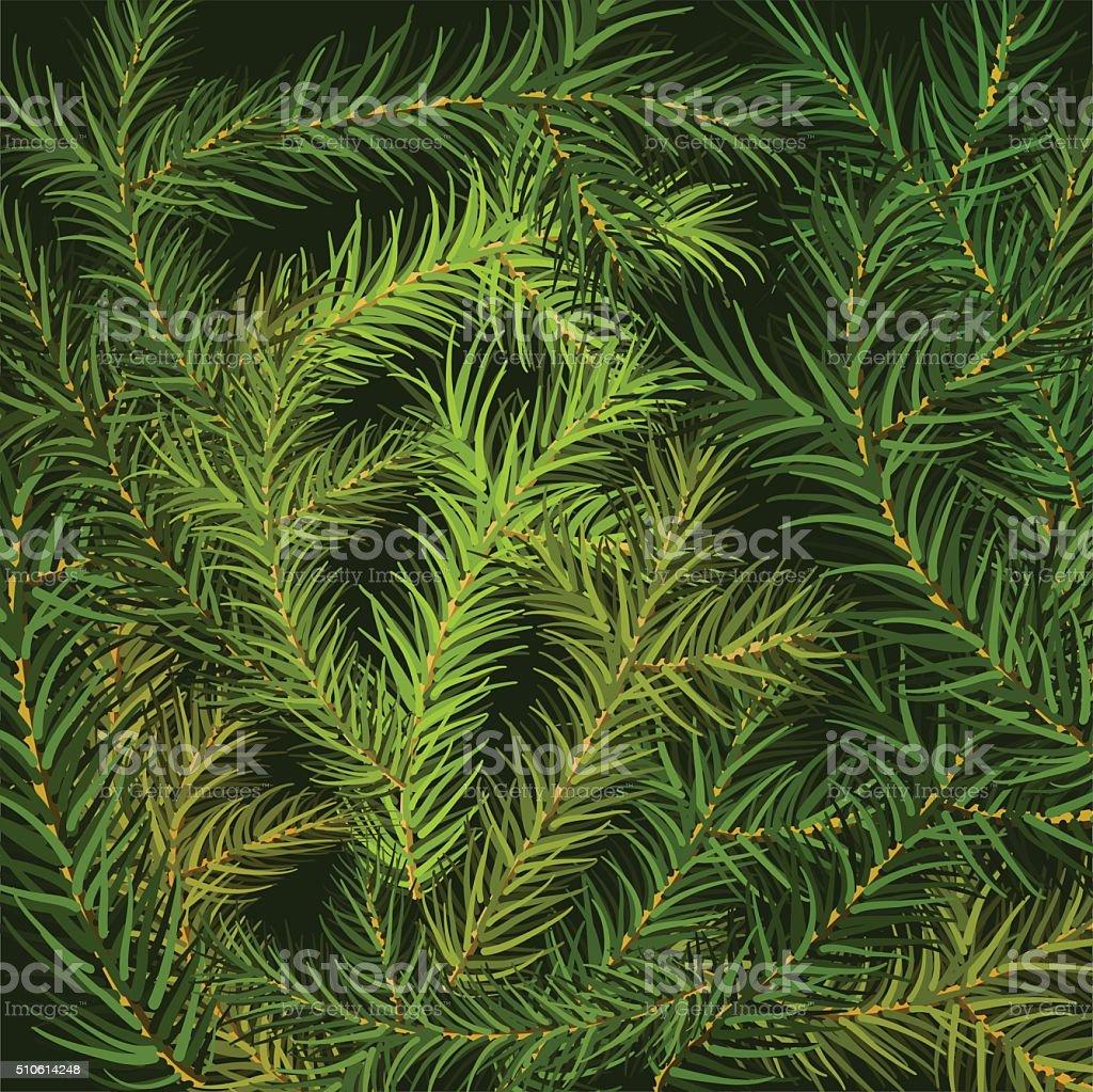 Christmas tree fir branch background vector art illustration