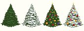 Beautiful Christmas Tree.Please see some similar pictures from my portfolio:
