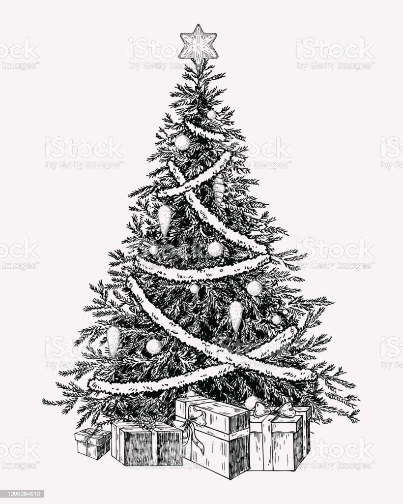 クリスマス ツリーのビンテージ illustation。手描き下ろしの休日の装飾要素。 - お祝いのロイヤリティフリーベクトルアート