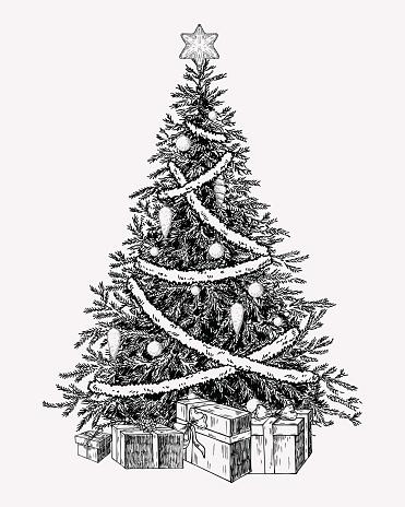 クリスマス ツリーのビンテージ Illustation手描き下ろしの休日の装飾要素 - お祝いのベクターアート素材や画像を多数ご用意