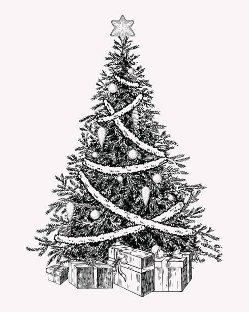 Christmas tree vintage illustation. Hand drawn holiday decor element. Christmas tree vintage illustation. Hand drawn holiday decor element. christmas drawings stock illustrations