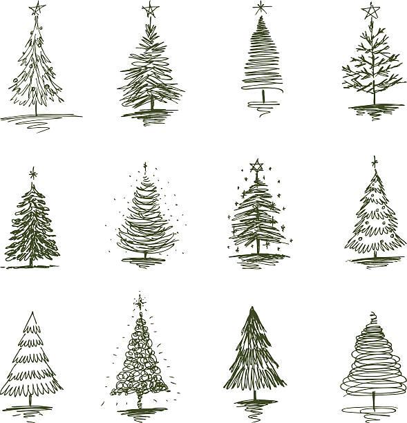 bildbanksillustrationer, clip art samt tecknat material och ikoner med christmas trees - ädelgran
