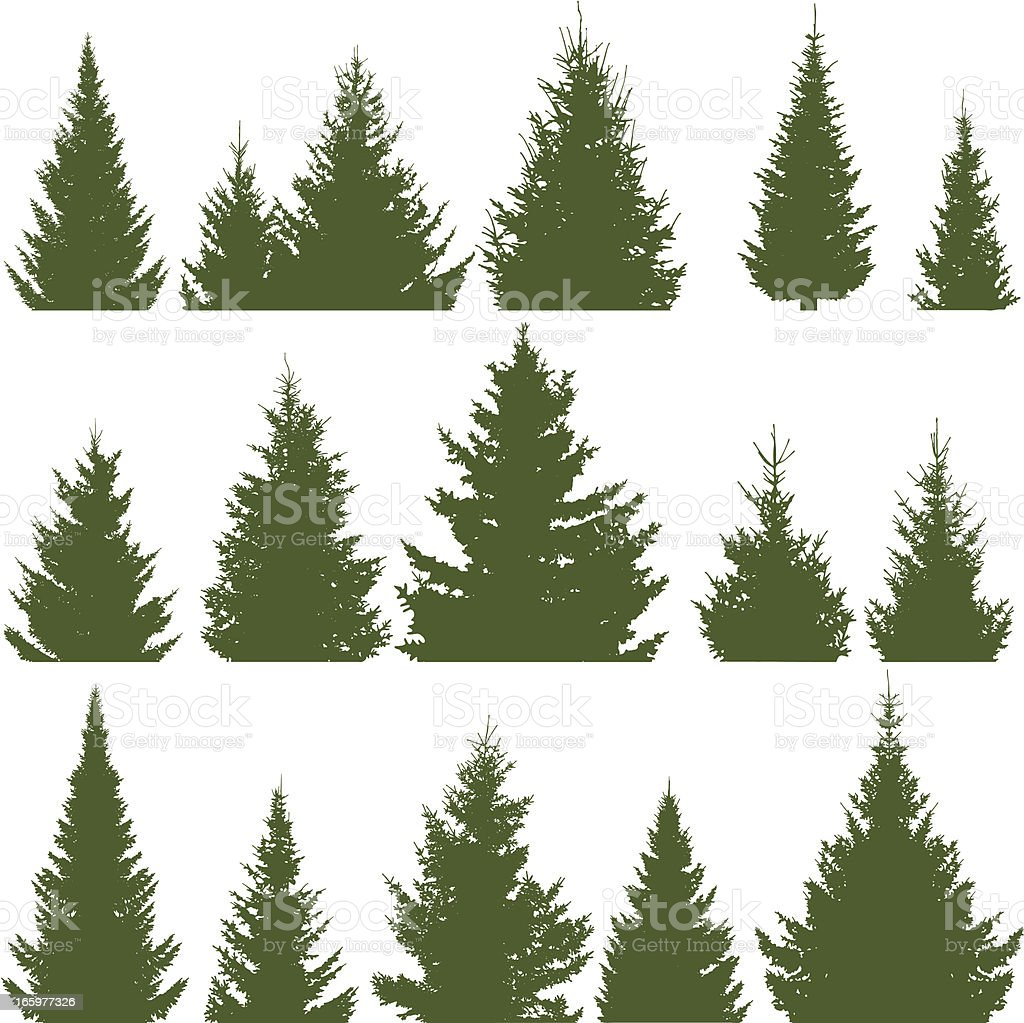 Christmas trees royalty-free stock vector art
