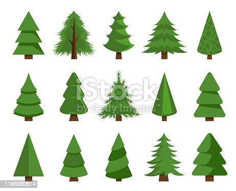 Vector illustration of the christmas trees set