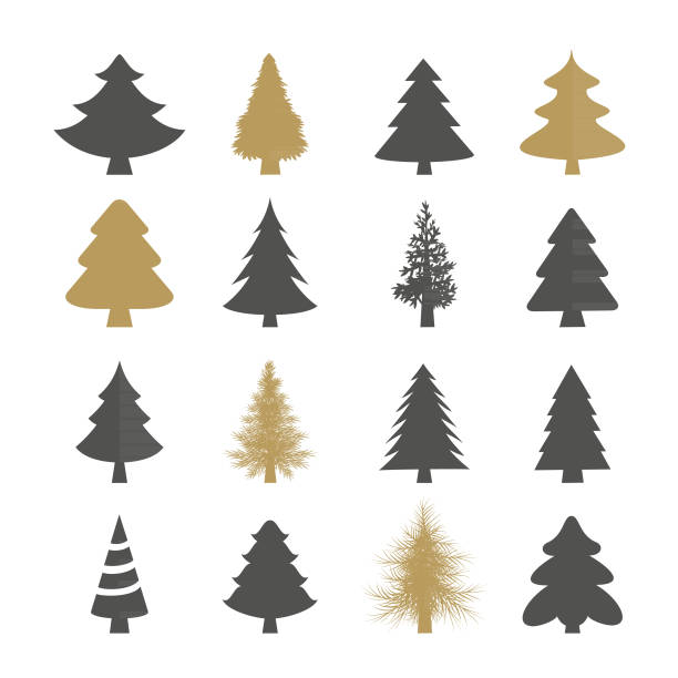 Christmas trees vector set Vector set of the christmas trees pine tree stock illustrations
