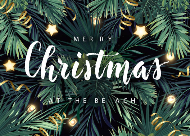 Christmas tropical vector design for banner or flyer with dark green palm leaves, gold glowing stars, light bulbs and white lettering. Christmas tropical vector design for banner or flyer with dark green palm leaves, gold glowing stars, light bulbs and white lettering. australian christmas stock illustrations