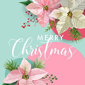 Christmas Winter Poinsettia Flower Banner, Graphic Background, Floral December Invitation, Flyer or Card. Modern Front Page in Vector