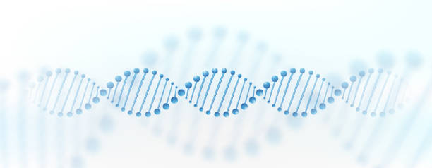 DNA chromosome banner concept. Science technology vector background for biomedical, health, chemistry design. 3D style vector art illustration