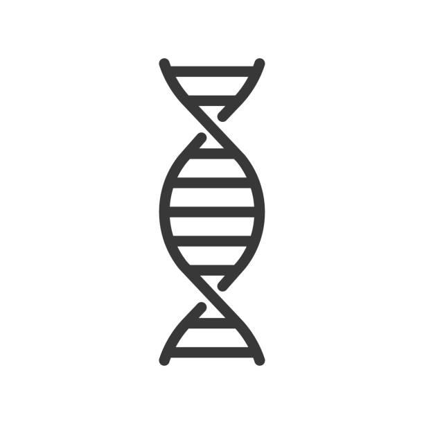 ilustraciones, imágenes clip art, dibujos animados e iconos de stock de cromosoma de adn, conjunto de iconos de contorno - adn