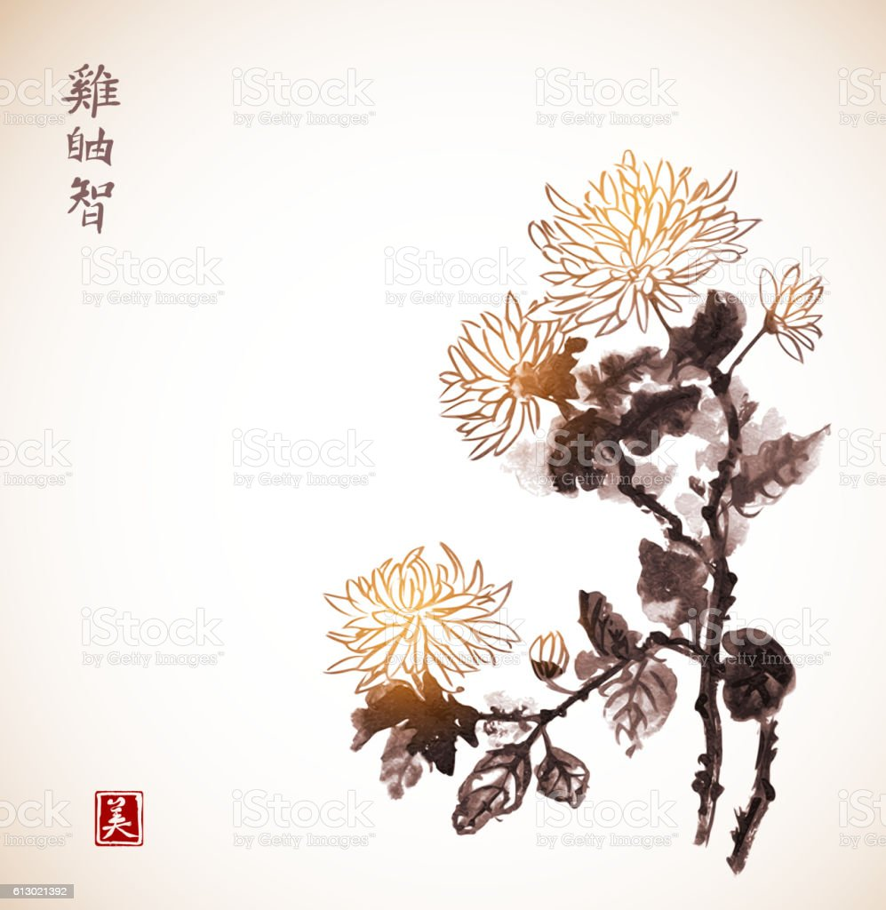 Chrysanthemum flowers in vintage style. Traditional oriental ink painting sumi-e, vector art illustration