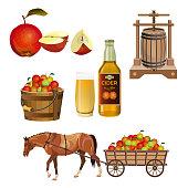 Cider set. Vector illustration isolated on white background