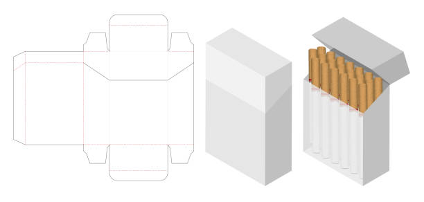 cigarette box 3d mockup with box dieline vector art illustration