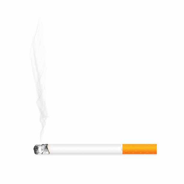 ilustrações de stock, clip art, desenhos animados e ícones de cigarette with ash and smoke isolated on background. realistic smoldering cigarette, close up view - exhaust white background