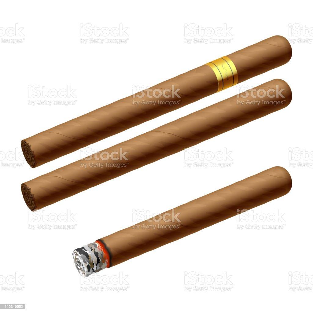 Cigars vector art illustration