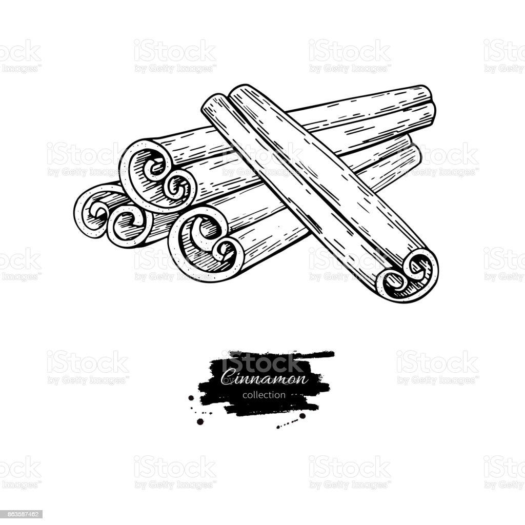 Dessin De Vectoriel Bâton De Cannelle Croquis Dessiné De La