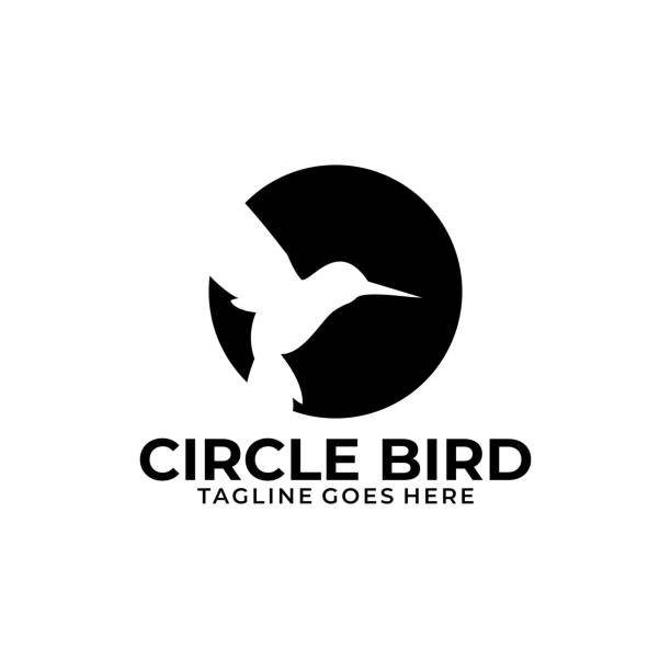 Circle Bird Illustration Vector Template Circle Bird Illustration Vector Template. Suitable for Creative Industry, Multimedia, entertainment, Educations, Shop, and any related business. hummingbird stock illustrations