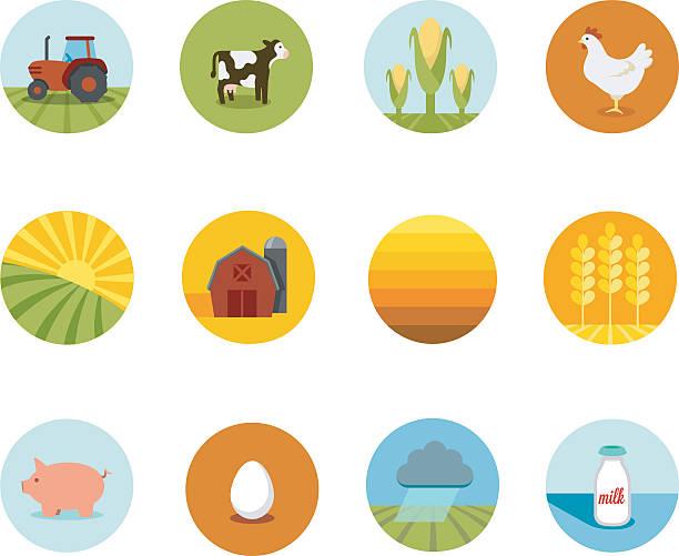 ilustrações, clipart, desenhos animados e ícones de circle agricultura ícones - corn farm