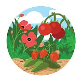 Circle locations, little landscape (field with red flowers, strawberries, tomatoes and green grass)