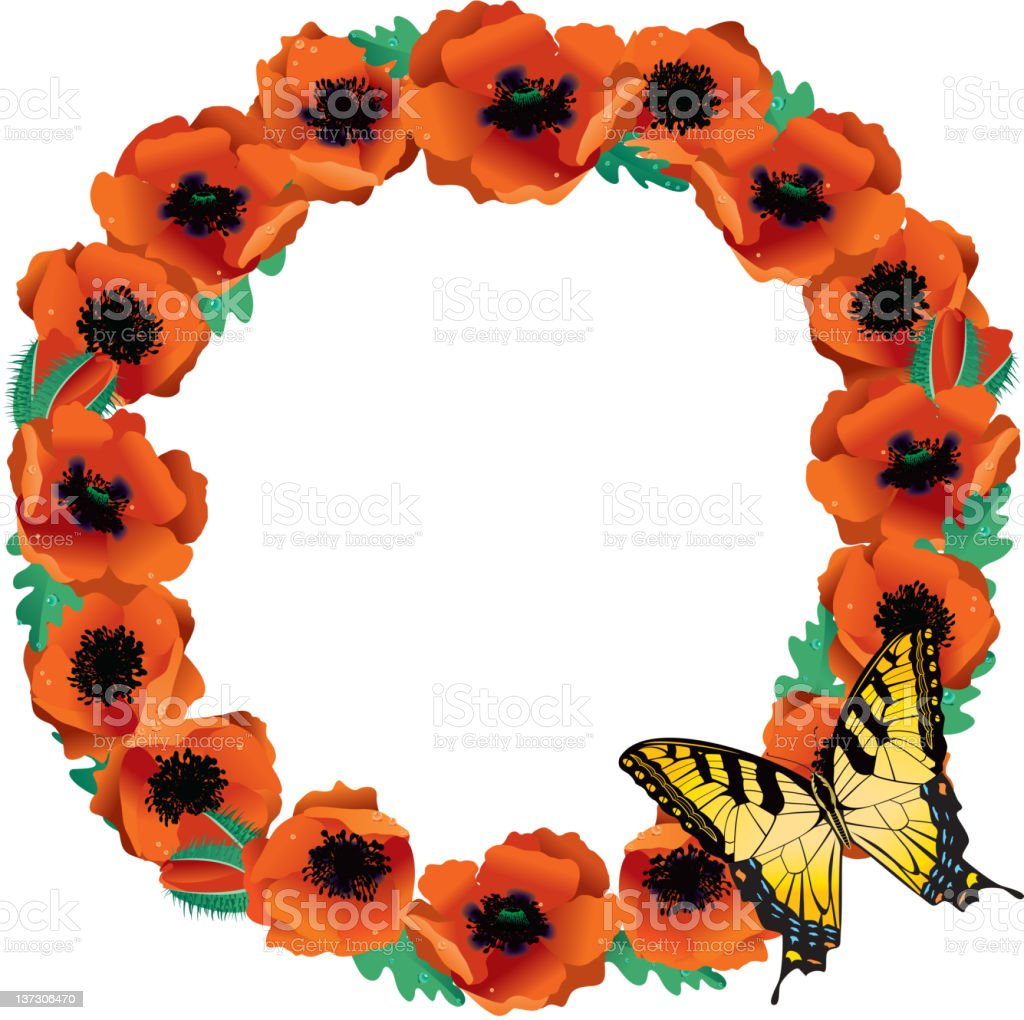 Circle of Bright Orange Poppies with Butterfly royalty-free stock vector art