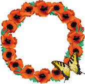 Circle of Bright Orange Poppies with Butterfly