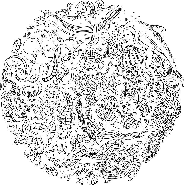 Circle vector set of doodles wild sealife. Contours of whale, dolphin, turtle, fish, starfish, crab, octopus, shell, jellyfish, algae. Underwater animals and plants. Coloring book for adults template. marine life stock illustrations