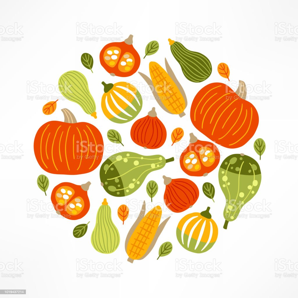 Circle vegetable ornament with pumpkins, corn and leaves vector art illustration