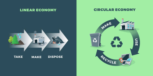 Circular and Linear Economy Compared vector art illustration